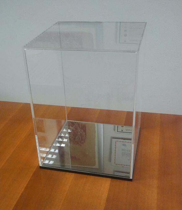 Teca plastica trasparente